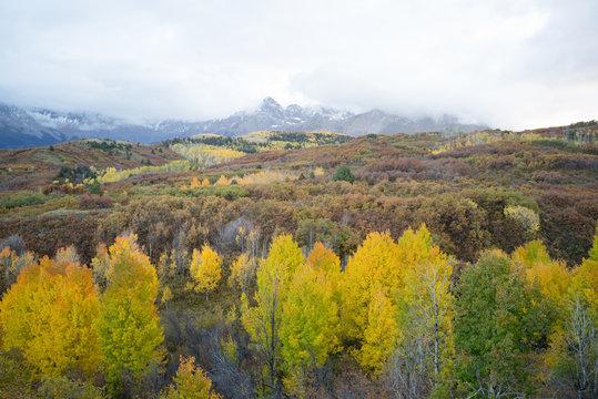 autumn colorado mountain