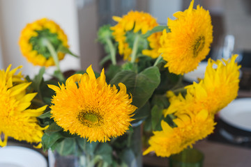 Coziness at home. Bouquet of sunflowers on the dining table. Shallow focus.