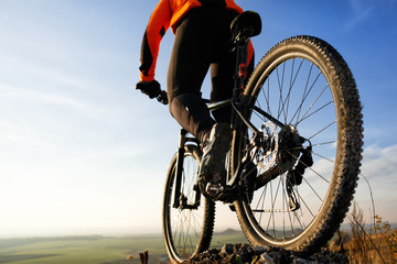 back view of a man with bicycle against the sky