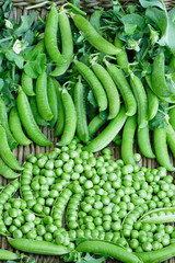 Fresh organic green peas