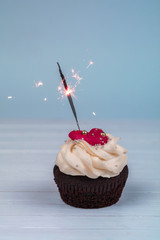 Birthday cupcake with sparkler. Cupcakes for Valentine's Day wit