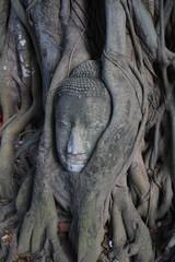 Buddha Head in Tree roots, Ayudthaya old city of Thailand.