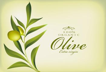 Olive label for packaging, vector illustration
