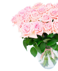 Pink blooming roses bouquet in glass vase close up isolated on white background