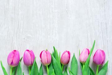 Frische Tulpen in einer Reihe auf Holz Hintergrund - Frauentag -