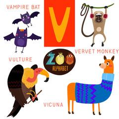 Cute zoo alphabet in vector.V letter.