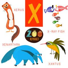 Cute zoo alphabet in vector.X letter.