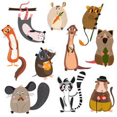 Vector set of small mammals in cartoon style.