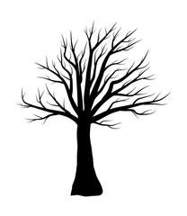 bare tree vector symbol icon design.