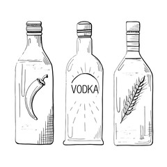Sketch three different bottles of vodka. Pepper, classical and wheat. Vector illustration.