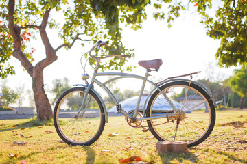 A vintage bicycle in a beautiful park during sunset time