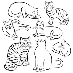 Cat Line Designs_Set 3
