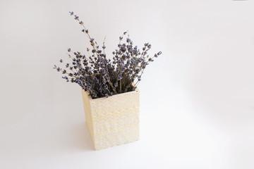 Lavender in vase pot vintage isolated