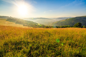 meadow with tall grass in mountains at sunrise