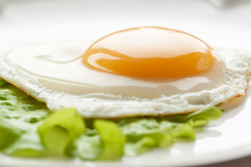 Aluminium Prints Egg Fried eggs with green leaf lettuce