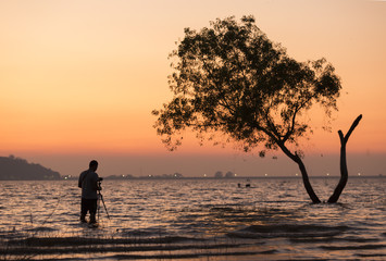 photographer take photo of tree in water