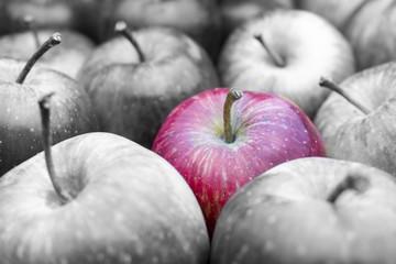 Fototapete - Roter Apfel