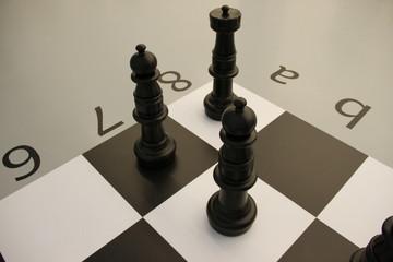Chessmen\Black and white chess pieces