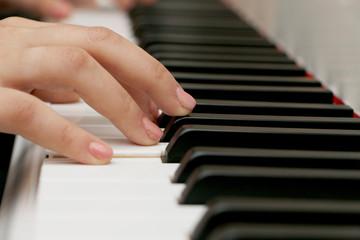 Close up piano, white and black keyboard