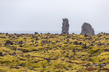 Lava field with lush green moss and rugged cliffs on seashore