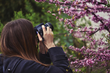 Girl taking photo of blossoming tree