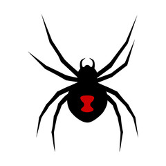 Black widow spider with red marking flat vector icon for apps and websites
