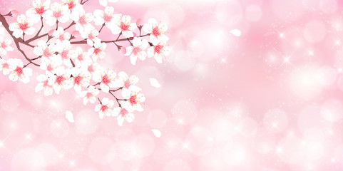 桜, さくら, 桜の花, 桜の木, 空, 木, 春, 花, 風景, アイコン, ピンク, 満開, 花見, 花びら, 自然, 白, かわいい, きれい, ベクター, イラスト, 素材