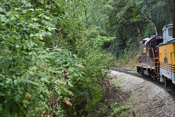 Great Smoky Mountains Railroad train ride through Tennessee and North Carolina