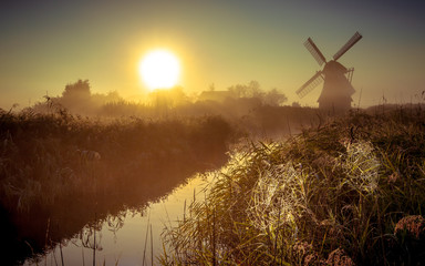 Wall Mural - Dutch Windmill in marshland with cobwebs
