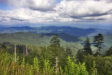 Great Smoky Mountains State Park, Tennessee-North Carolina, USA