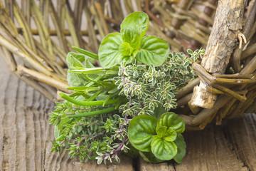 Freshly harvested herbs in a basket