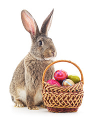 Easter basket and bunny.