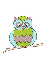 Colored owl sitting on a branch isolated