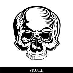 Black human skull front view without a lower jaw