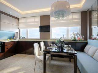 Modern elegant and luxurious kitchen