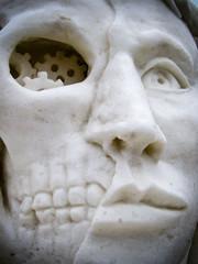 Ice Sculpture Face