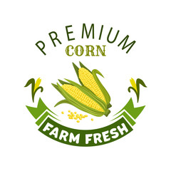 Corn cob vegetable vector icon or emblem