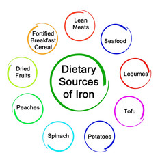 Dietary Sources of Iron