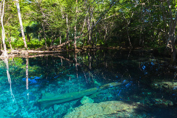 Deep blue lake in dark tropical forest