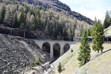 Trenino Rosso del Bernina 37