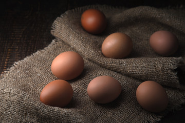 Chicken eggs on the canvas horizontal