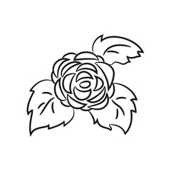 Cartoon rose icon on the white background for your design.