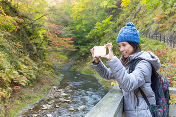 Woman take photo at forest