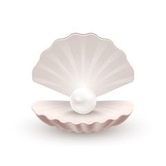 Shell with pearl inside, isolated on white, vector illustration