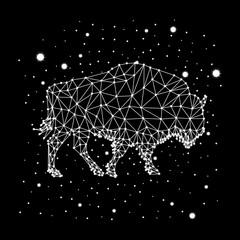 bison constellation vector art