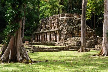 Yaxchilan Maya ruins in Mexico