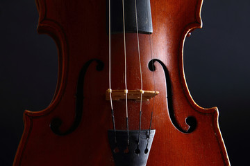Violin - music and elegance