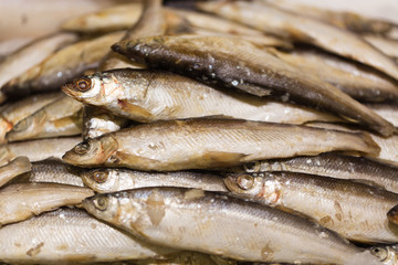 Raw smelt fish in the store