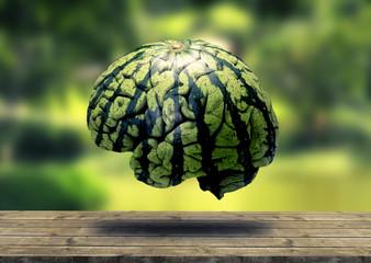 Melancia Cérebro