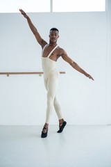 Portrait of ballerino practicing ballet dance